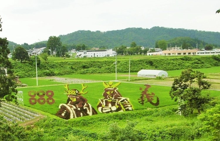 マツキドライビングスクール米沢松岬校の写真