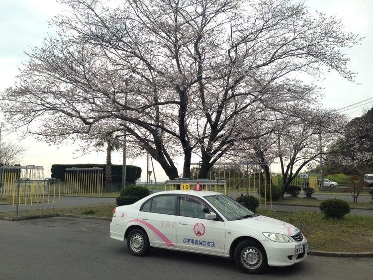 志布志自動車学校の写真