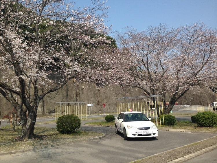 志布志自動車学校のその他画像4